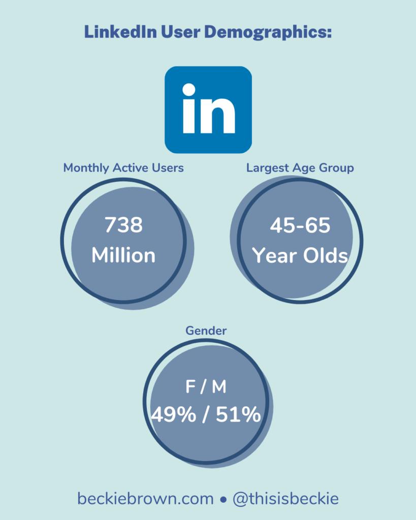 Infographic - LinkedIn Demographics